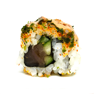 Foto Spicy Fresh Tuna maki